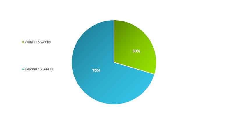 Figure 1 Pie Chart is a visual representation of the paragraph above